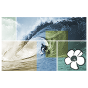 SURFER WAVE HIBISCUS MOSAIC