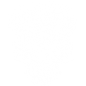 DAY OF THE DEAD SKULL ENGINE