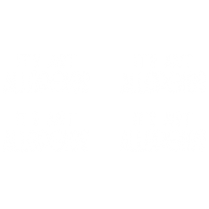 JUST ALLERGIES -MASK