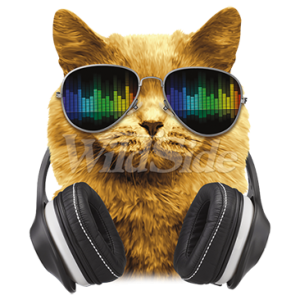 DJ CAT WITH HEADPHONES