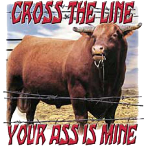 CROSS THE LINE-BULL