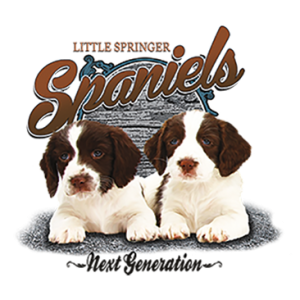 LITTLE SPRINGER SPANIELS
