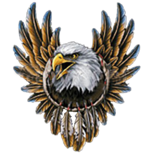 EAGLE WITH FEATHERS