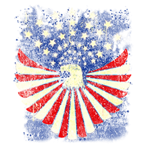 RED WHITE AND BLUE EAGLE     20