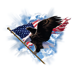 PATRIOTIC FLYING EAGLE