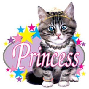 PRINCESS KITTY (Y)