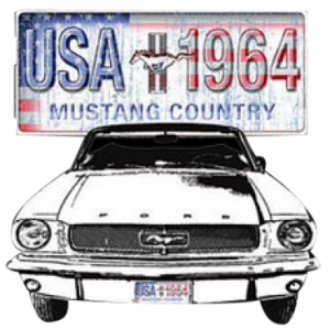 FORD MUSTANG COUNTRY    18