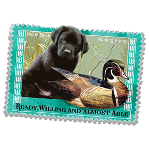 WOOD DUCK HUNTING STAMP