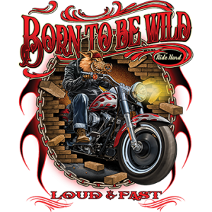 BORN TO BE WILD - HOG ON CYCLE
