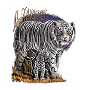 WHITE TIGER-FULL BODY