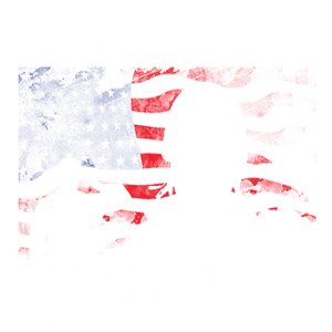 AMERICA STAND AND SALUTE
