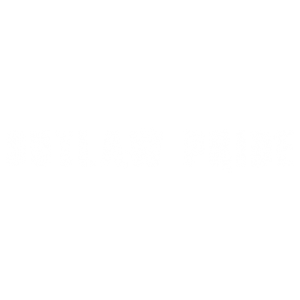 OUTLAW PRIDE SLEEVE
