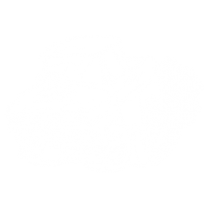 MUSCLE TRUCK WHITE