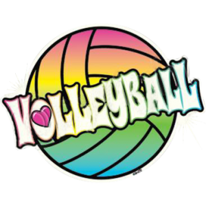 NEON VOLLEYBALL