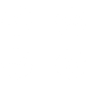 BIDEN HARRIS CIRCLE-MASK