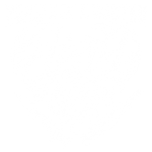 BRAINS OF A DOCTOR HEART OF A NURSE