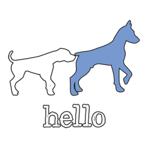 HELLO DOGS