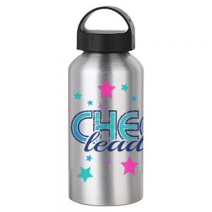 WATER BOTTLE WITH HANDLE - 17 OZ SILVER