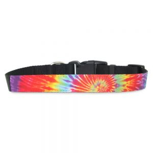 PET COLLAR - MEDIUM