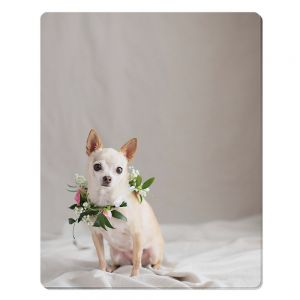 8in x 10in Textured Aluminum Photo Panel Sublimation Blanks