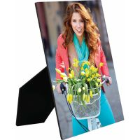 8 x 10 PHOTO PANEL WITH EASEL
